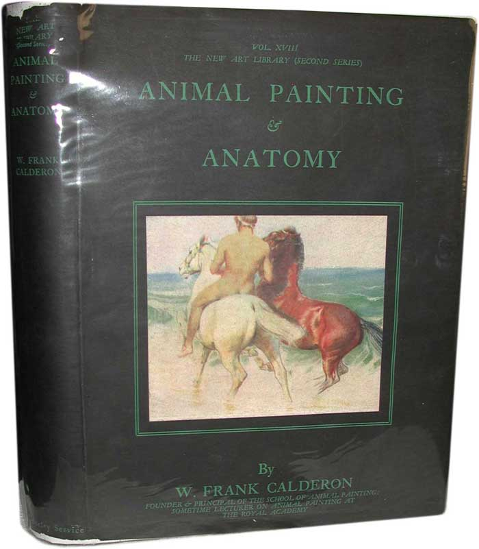 Image for Animal Painting and Anatomy: Vol XVIII The New Art Library (Second Series)