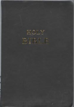 Image for The Holy Bible: Containing the Old and New Testaments New Revised Standard Version, Anglicized Edition. Leather
